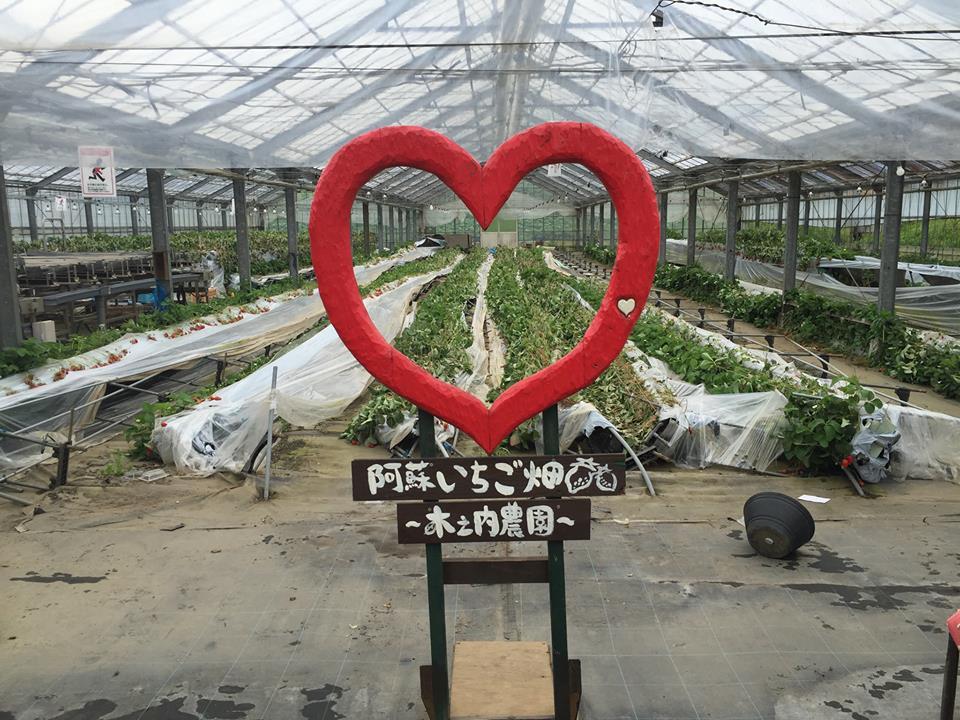 【熊本地震】阿蘇市へ農作業ボランティアに行こう!第2回おやじたちによる熊本復興応援バスツアー