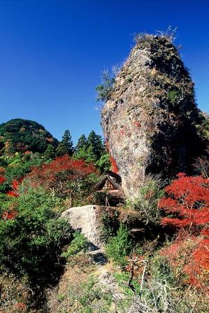 岩屋神社本殿と権現岩.jpg