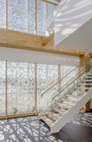 16_階段(ガラス越しにアーキスキン).jpg