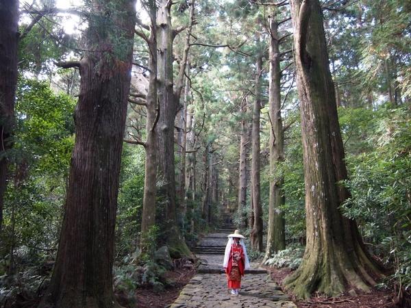 【世界の聖地の旅コーディネーターが語る!熊野旅体験談とみどころ満載神秘な生情報】ソーシャルビジネス研究会の写真です