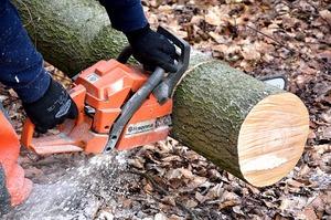 20191207cutting-wood-54e1d1454f_640.jpg