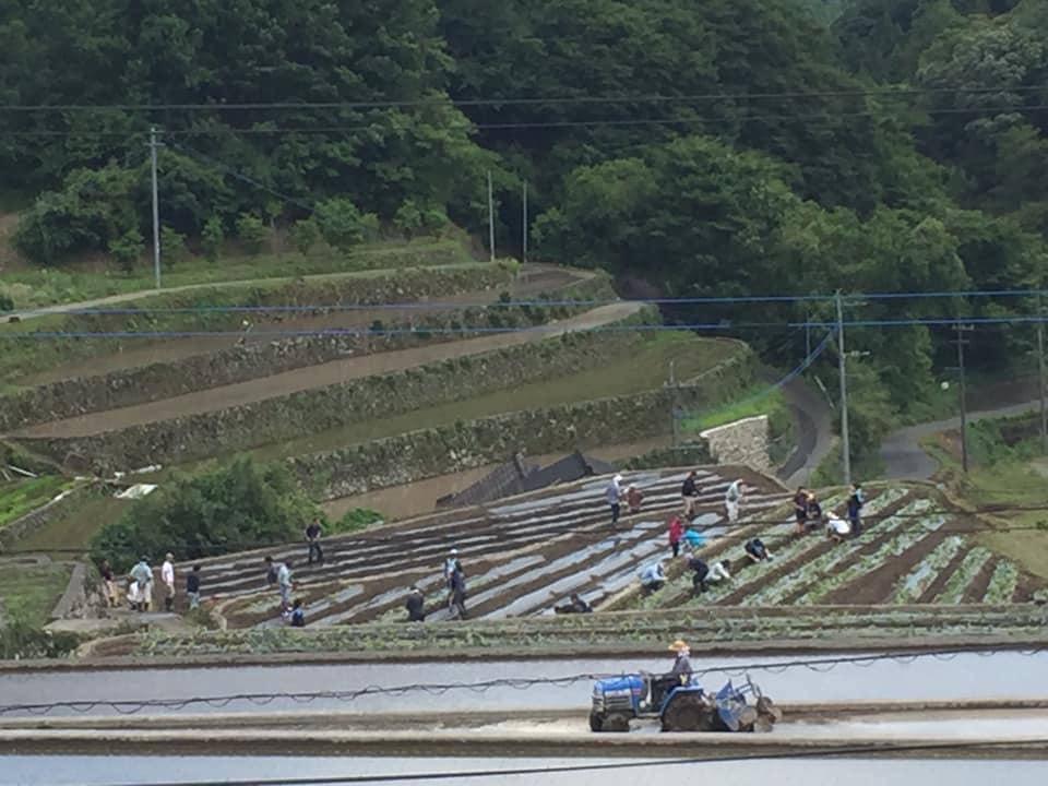 東峰村芋ほり.jpg