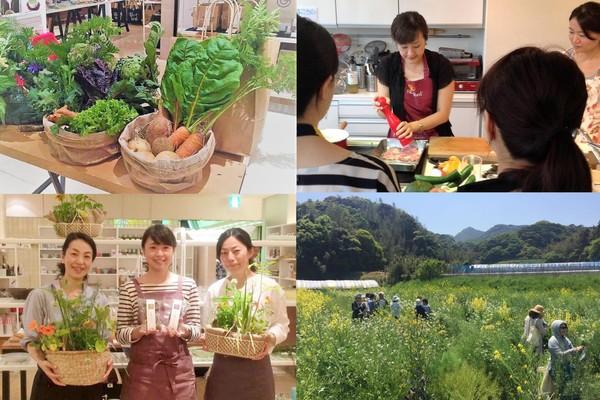 """8/31開催『オーガニックの食と農業をライフワークとする女性起業家に学ぶ』第17回PIPIT交流会の写真です"""""""